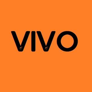 Vivo Firmware